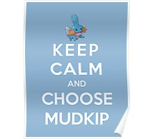 Keep Calm And Choose Mudkip Poster