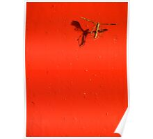 Dead Bug in Red Poster