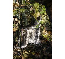 Lower Lumsdale Falls Photographic Print