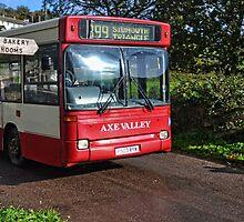 Village Bus by lynn carter