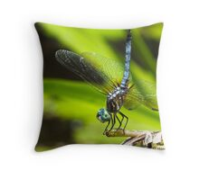 Smiling For Me Throw Pillow