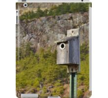 A Home in the Hills iPad Case/Skin