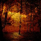 This Time Of Year, It Starts To Get Mystical ..  by Mike  Waldron