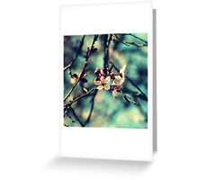 Blooming Beautiful Greeting Card
