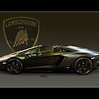 Matt Black Lambo Roadster by TeaCee