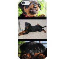 Collage Of Cute Female Rottweiler Puppy iPhone Case/Skin