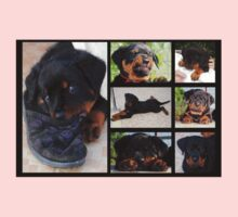 Collage Of Cute Female Rottweiler Puppy Kids Tee