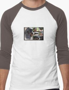 Collage Of Cute Female Rottweiler Puppy Men's Baseball ¾ T-Shirt