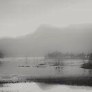 serenity by Hallvor
