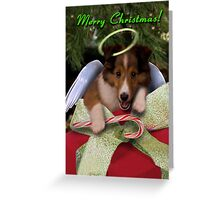 Christmas Angel Sheltie Greeting Card