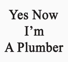 Yes Now I'm A Plumber  by supernova23