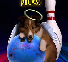 Bowling Rocks Angel Sheltie Puppy by jkartlife