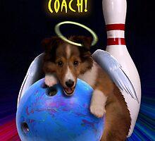 Thanks Coach Angel Sheltie Puppy by jkartlife