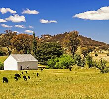 Pastures Old by TonyCrehan