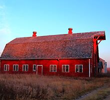 Abandoned Old Red by Larry Trupp