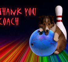 Thank You Coach Sheltie Puppy by jkartlife