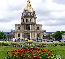 Blooms on les invalides - Paris, France by Norman Repacholi