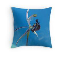 Caladenia barbarossa - Common Dragon Orchid, Frankland River, WA Throw Pillow