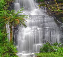 Triplet Falls. #3 by Bette Devine