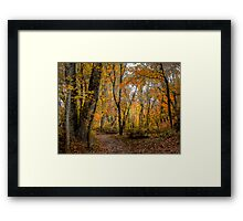 It Touches My Heart ~ Fall Colors ~ Framed Print