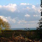 Sea Views by Antoinette B