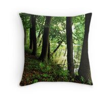 At the old canal Throw Pillow