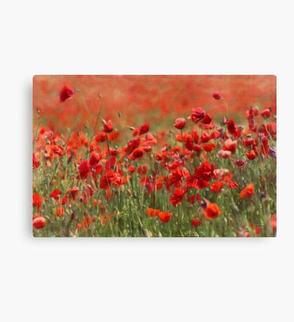 painterly poppies Canvas Print