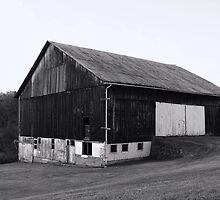The Big Brown Barn in B/W by vigor