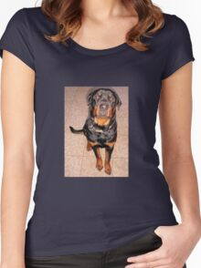 Portrait Of A Young Rottweiler Male Sitting Women's Fitted Scoop T-Shirt