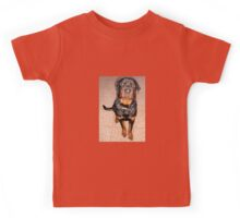 Portrait Of A Young Rottweiler Male Sitting Kids Tee