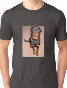 Portrait Of A Young Rottweiler Male Sitting Unisex T-Shirt