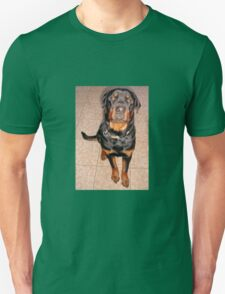 Portrait Of A Young Rottweiler Male Sitting T-Shirt