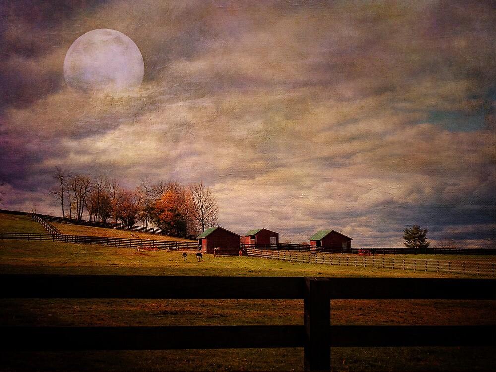 Hillbilly Farm by PineSinger