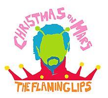 Christmas on Mars - The Flaming Lips Photographic Print