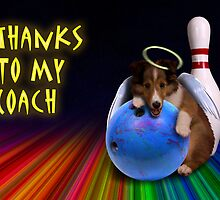 Thanks To My Coach Sheltie Puppy by jkartlife