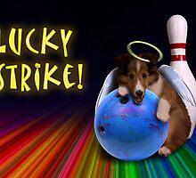 Lucky Strike Sheltie Puppy by jkartlife