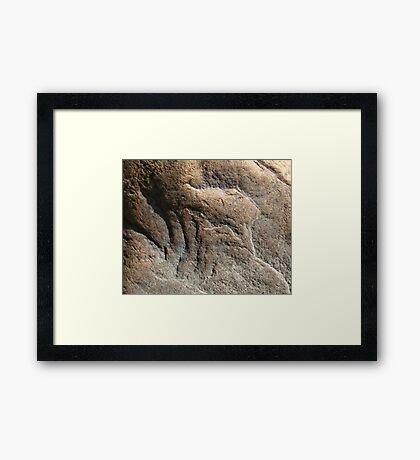 Stone Bird Framed Print