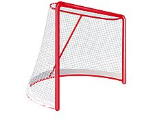Hockey Net Photographic Print