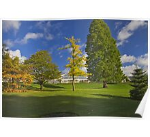 Blue sky and Autumn colours Poster