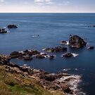 Dangerous Coast by Stuart  Gennery