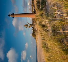 Little Sable Light Michigan by Steve Gadomski
