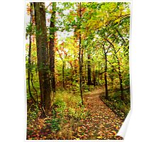 Autumn Color At Old Woman Creek Poster