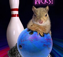 Bowling Rocks Squirrel by jkartlife