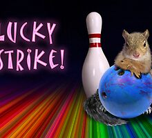 Lucky Strike Squirrel by jkartlife