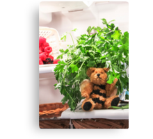 Bumble Bear Flew Into the Fridge Today! Canvas Print