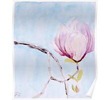pretty balancing magnolia Poster