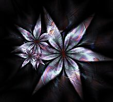 Abstract Flower by Virginia N. Fred