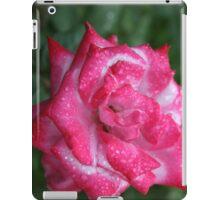 Pink Tipped Rose iPad Case/Skin