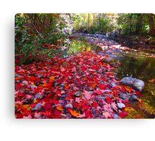Maple Leaf sprinkles Canvas Print