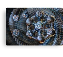 Whirly-gig Canvas Print